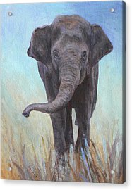On The Move Acrylic Print by Margaret Saheed