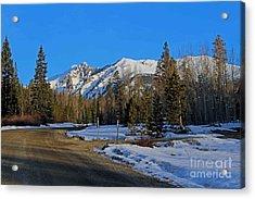 On The Road Again Acrylic Print by Fiona Kennard