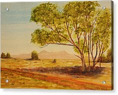 Acrylic Print featuring the painting On The Road To Broken Hill Nsw Australia by Tim Mullaney