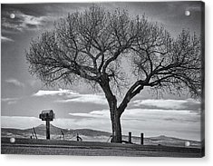 On The Road To Taos Acrylic Print