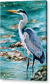 Acrylic Print featuring the painting On The Rocks Great Blue Heron by Roxanne Tobaison