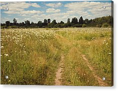 On The Summer Meadow. Russia Acrylic Print by Jenny Rainbow