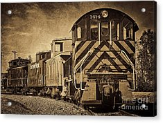 On The Tracks... Take Two. Acrylic Print by Peggy Hughes