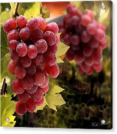 On The Vine Acrylic Print by Cole Black