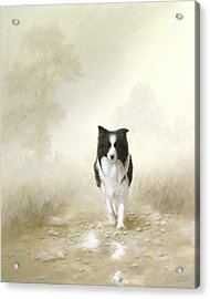 On The Way Home Acrylic Print by John Silver