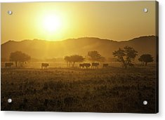 Acrylic Print featuring the photograph On The Way Home by Judi Baker