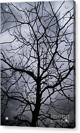 On Their Shoulders Held The Sky Acrylic Print by Linda Shafer