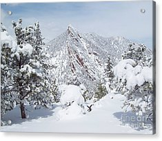 On Top Of Bear Peak Snow Mountain  Acrylic Print