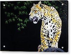 Onca And Bamboo Acrylic Print