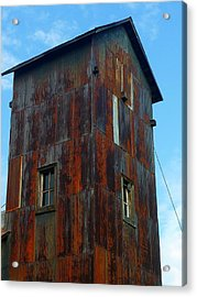 Acrylic Print featuring the photograph Once Upon A Mine by Gigi Dequanne