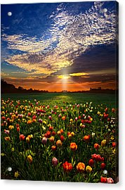 Once Upon A Time Acrylic Print by Phil Koch