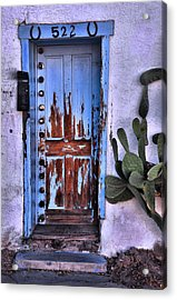 Acrylic Print featuring the photograph One Can Never Feel Too Safe by Barbara Manis