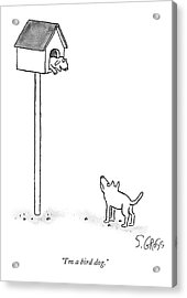 One Dog Is In A Bird House While Another Looks Acrylic Print