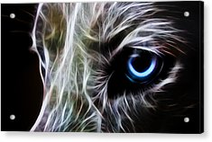 One Eye Acrylic Print by Aged Pixel