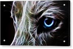 One Eye Acrylic Print by Aged Pixel
