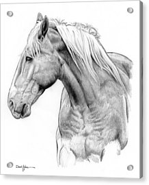 Da134 One Horse Daniel Adams  Acrylic Print