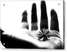One Life Acrylic Print