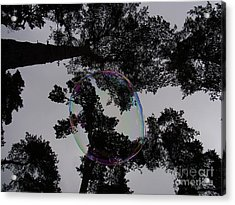 One Moment Dream  Acrylic Print by Agnieszka Ledwon