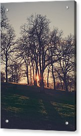 One More Try Acrylic Print by Laurie Search