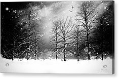 One Night In November Acrylic Print