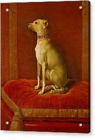 One Of Frederick II Italian Greyhounds Acrylic Print by German School