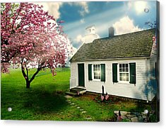 The Little Old Schoolhouse Acrylic Print by Diana Angstadt
