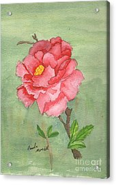 One Rose Acrylic Print