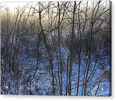 One Solstice Morning In Palenville The Light Broke Through The Dew Acrylic Print by Terrance DePietro