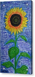 One Sunny Stalk Acrylic Print by Kat Poon