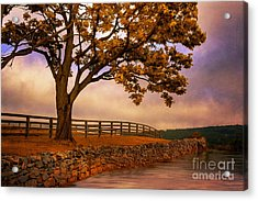 One Tree Hill Acrylic Print by Lois Bryan