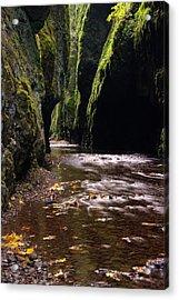 Onieata Gorge Acrylic Print by Jeff Swan