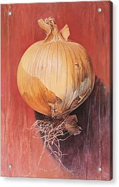 Onion Acrylic Print by Hans Droog