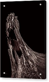 Onion Skin Two Acrylic Print by Bob Orsillo