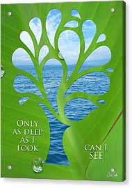 Only As Deep As I Look Can I See Acrylic Print by Nikki Smith
