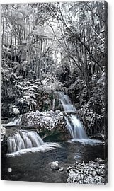 Onomea Falls In Infrared 2 Acrylic Print