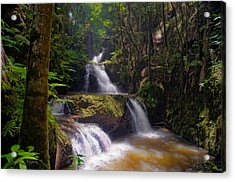 Acrylic Print featuring the photograph Onomea Falls by Jim Thompson