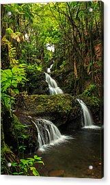 Onomea Falls Acrylic Print