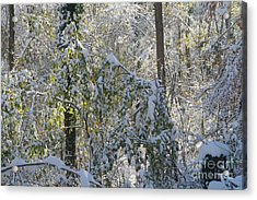 Onset Of Winter 2 Acrylic Print by Rudi Prott