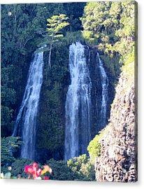 Opaeka'a Falls Acrylic Print by Alohi Fujimoto