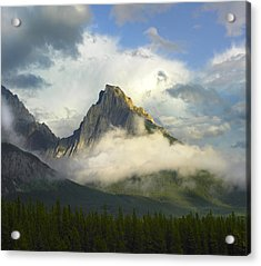 Opal Range In Fog Kananaskis Country Acrylic Print by Tim Fitzharris