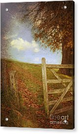 Open Country Gate Acrylic Print by Amanda Elwell