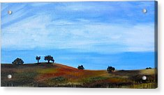 Open Field Acrylic Print by Melissa Torres