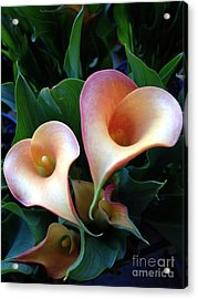 Open Hearts Acrylic Print by Roxanne Marshal