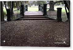 Open Path Acrylic Print by Gonzalo Teran