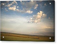 Open Skies Acrylic Print by Andrew Soundarajan