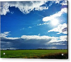 Open Skies Acrylic Print by Quincy Casey