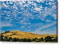 Open Sky Acrylic Print by Rima Biswas