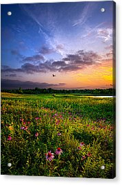 Open Spaces Acrylic Print by Phil Koch