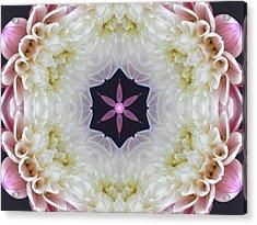 Opening To Love Mandala Acrylic Print