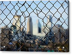 Opportunity Acrylic Print by Jim Hughes